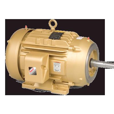 Baldor Gold Motor